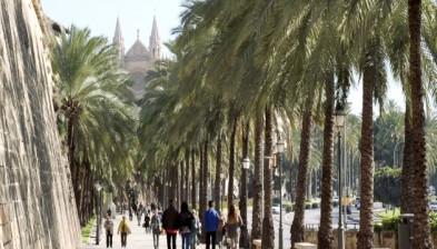 Creiem en Palma de Mallorca