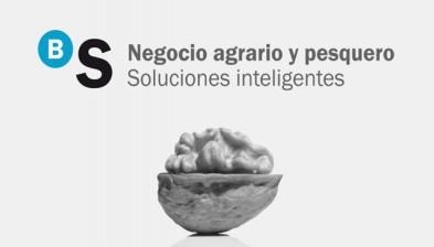 Negocio Agrario y Pesquero en Banco Sabadell